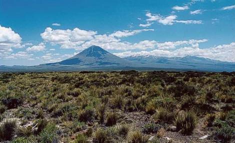 Reserva provincial la payunia volcanes de la payunia malarg e turismo mendoza - Mas l estepa agullana ...
